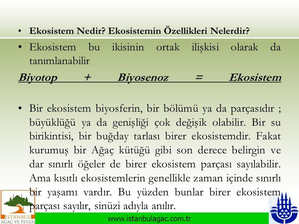 www.istanbulagac.com.tr •Ekosistem Nedir? Ekosistemin Özellikleri Nelerdir? •Ekosistem bu ikisinin ortak ilişkisi olarak da tanımlanabilir Biyotop + B