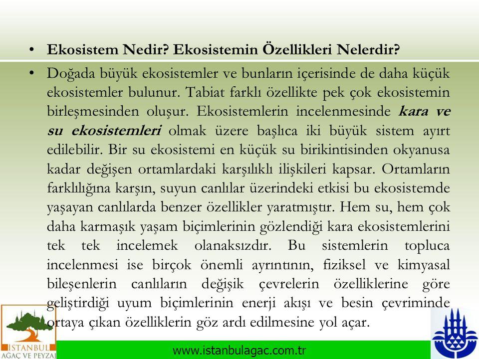 www.istanbulagac.com.tr •Ekosistem Nedir? Ekosistemin Özellikleri Nelerdir? •Doğada büyük ekosistemler ve bunların içerisinde de daha küçük ekosisteml