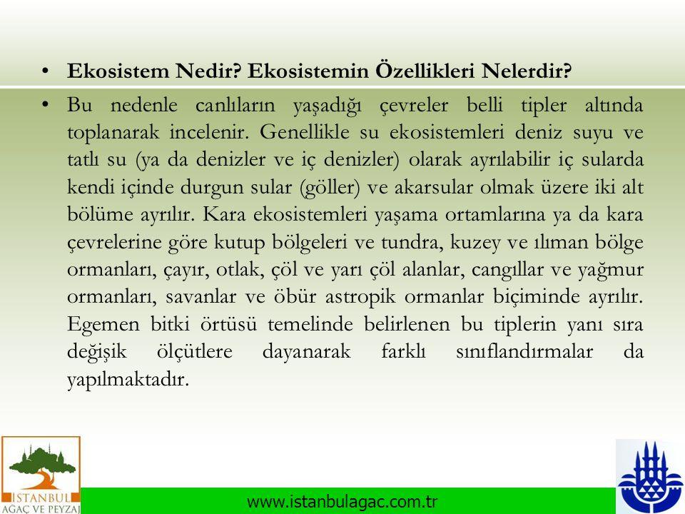www.istanbulagac.com.tr •Ekosistem Nedir? Ekosistemin Özellikleri Nelerdir? •Bu nedenle canlıların yaşadığı çevreler belli tipler altında toplanarak i
