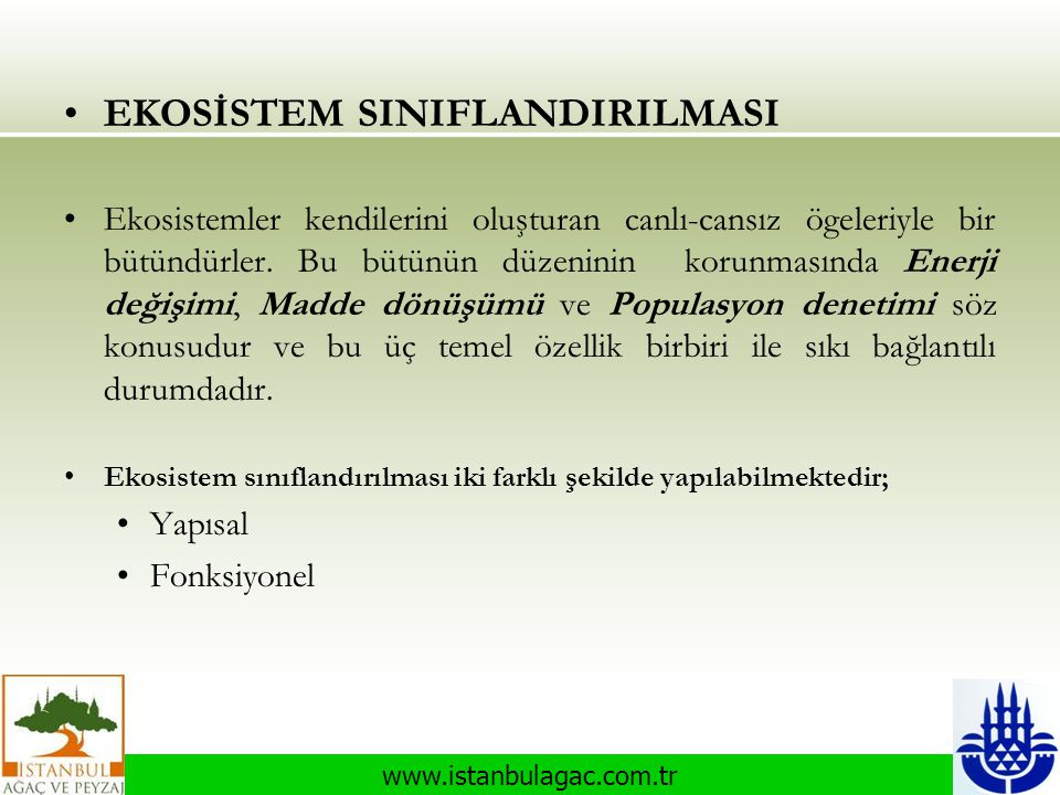 www.istanbulagac.com.tr •EKOSİSTEM SINIFLANDIRILMASI •Ekosistemler kendilerini oluşturan canlı-cansız ögeleriyle bir bütündürler. Bu bütünün düzeninin