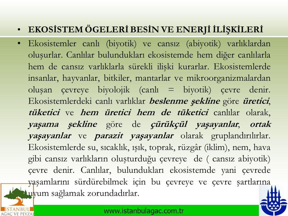 www.istanbulagac.com.tr •EKOSİSTEM ÖGELERİ BESİN VE ENERJİ İLİŞKİLERİ •Ekosistemler canlı (biyotik) ve cansız (abiyotik) varlıklardan oluşurlar. Canlı
