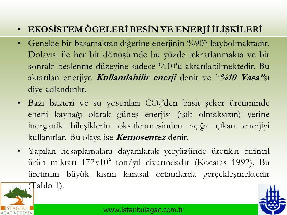 www.istanbulagac.com.tr •EKOSİSTEM ÖGELERİ BESİN VE ENERJİ İLİŞKİLERİ •Genelde bir basamaktan diğerine enerjinin %90'ı kaybolmaktadır. Dolayısı ile he