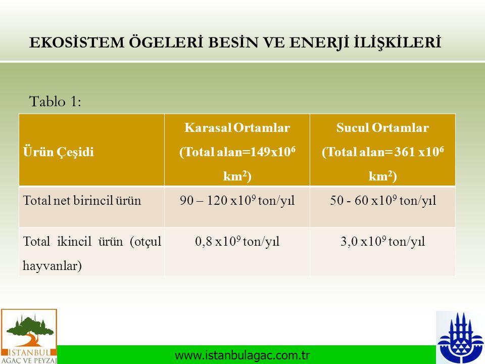 www.istanbulagac.com.tr EKOSİSTEM ÖGELERİ BESİN VE ENERJİ İLİŞKİLERİ Tablo 1: Ürün Çeşidi Karasal Ortamlar (Total alan=149x10 6 km 2 ) Sucul Ortamlar