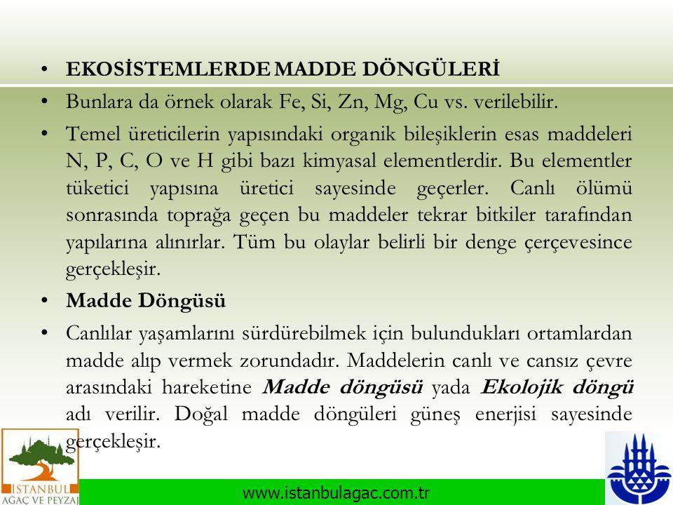 www.istanbulagac.com.tr •EKOSİSTEMLERDE MADDE DÖNGÜLERİ •Bunlara da örnek olarak Fe, Si, Zn, Mg, Cu vs. verilebilir. •Temel üreticilerin yapısındaki o