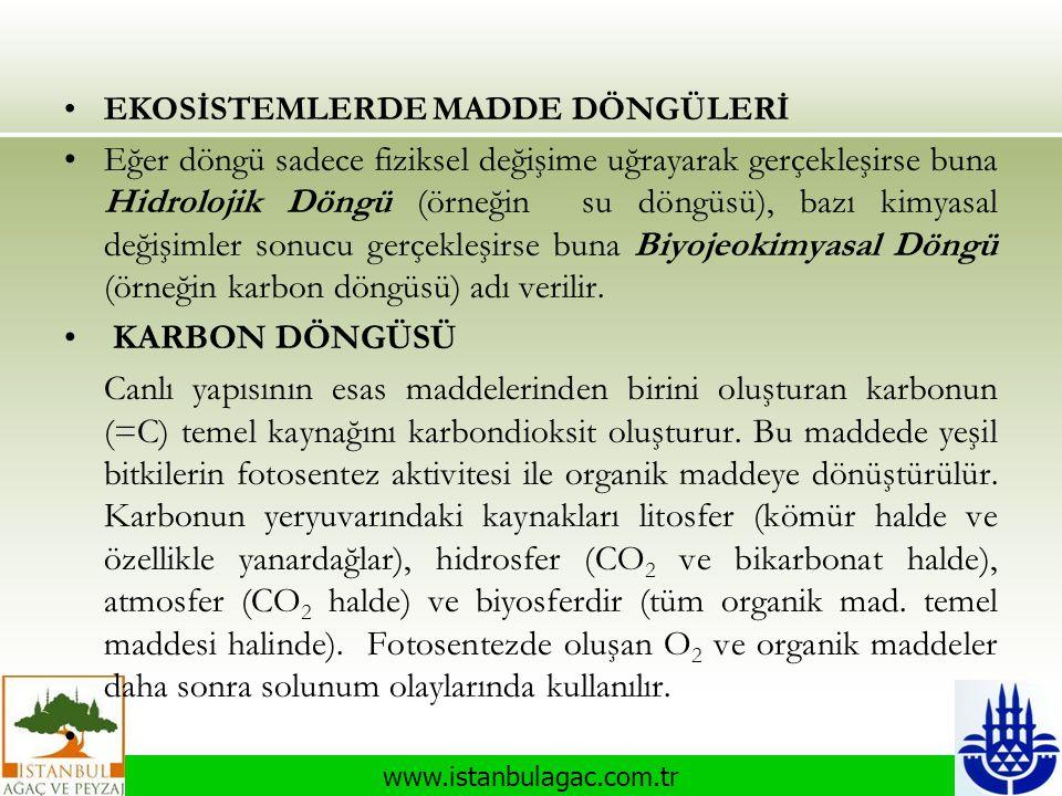 www.istanbulagac.com.tr •EKOSİSTEMLERDE MADDE DÖNGÜLERİ •Eğer döngü sadece fiziksel değişime uğrayarak gerçekleşirse buna Hidrolojik Döngü (örneğin su