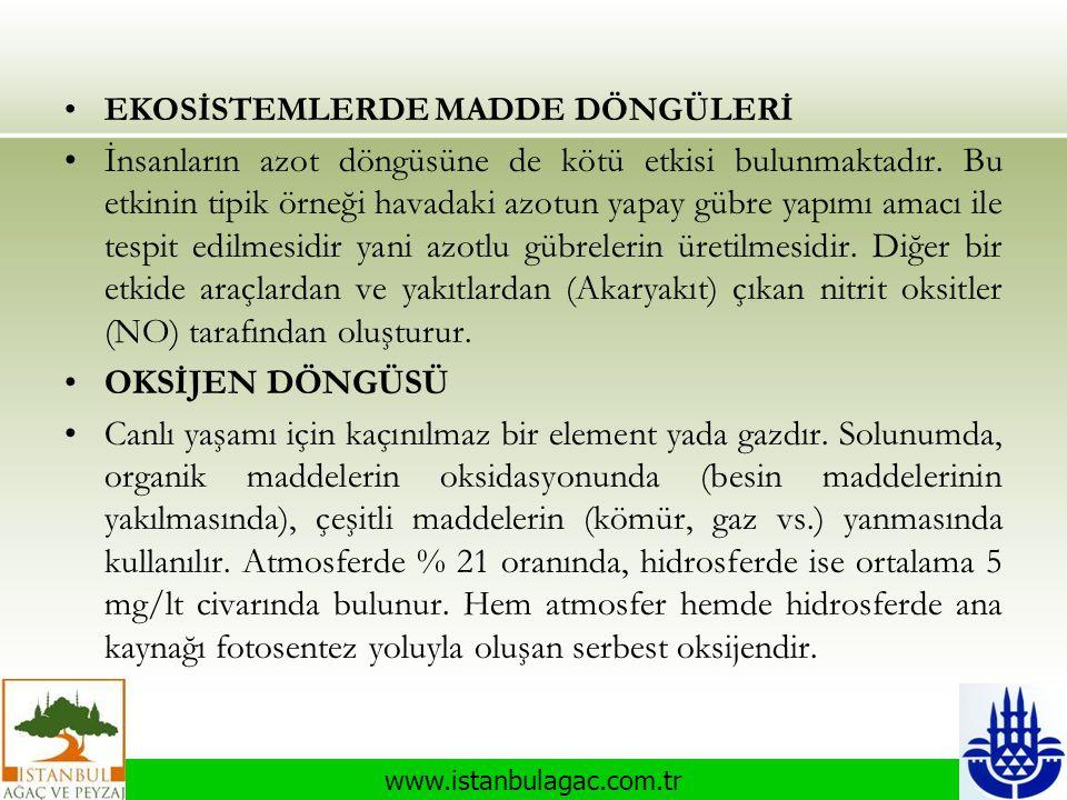 www.istanbulagac.com.tr •EKOSİSTEMLERDE MADDE DÖNGÜLERİ •İnsanların azot döngüsüne de kötü etkisi bulunmaktadır. Bu etkinin tipik örneği havadaki azot