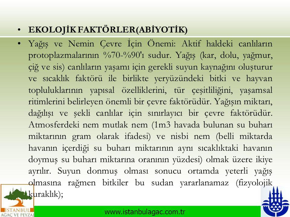 www.istanbulagac.com.tr •EKOLOJİK FAKTÖRLER(ABİYOTİK) •Yağış ve Nemin Çevre İçin Önemi: Aktif haldeki canlıların protoplazmalarının %70-%90'ı sudur. Y