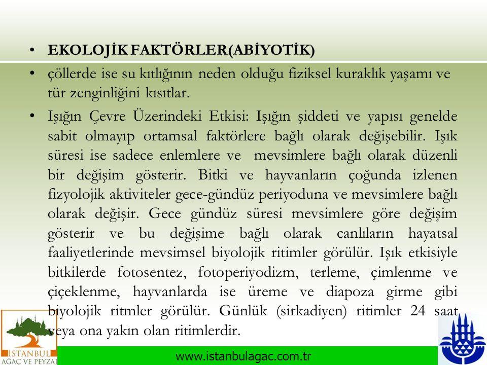 www.istanbulagac.com.tr •EKOLOJİK FAKTÖRLER(ABİYOTİK) •çöllerde ise su kıtlığının neden olduğu fiziksel kuraklık yaşamı ve tür zenginliğini kısıtlar.