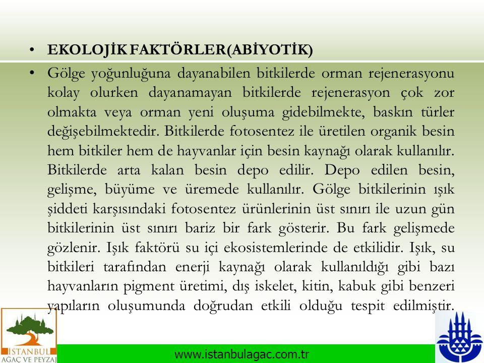 www.istanbulagac.com.tr •EKOLOJİK FAKTÖRLER(ABİYOTİK) •Gölge yoğunluğuna dayanabilen bitkilerde orman rejenerasyonu kolay olurken dayanamayan bitkiler