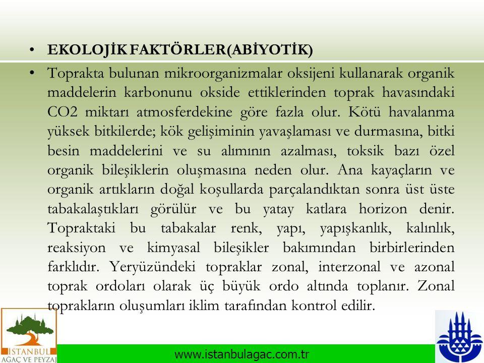 www.istanbulagac.com.tr •EKOLOJİK FAKTÖRLER(ABİYOTİK) •Toprakta bulunan mikroorganizmalar oksijeni kullanarak organik maddelerin karbonunu okside etti