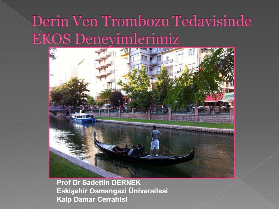 Prof Dr Sadettin DERNEK Eskişehir Osmangazi Üniversitesi Kalp Damar Cerrahisi