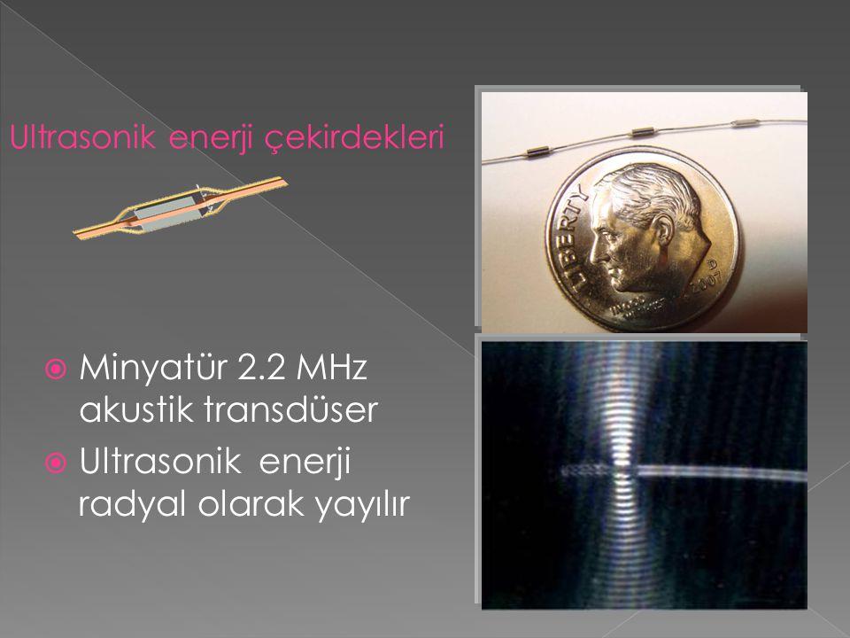  Minyatür 2.2 MHz akustik transdüser  Ultrasonik enerji radyal olarak yayılır Ultrasonik enerji çekirdekleri