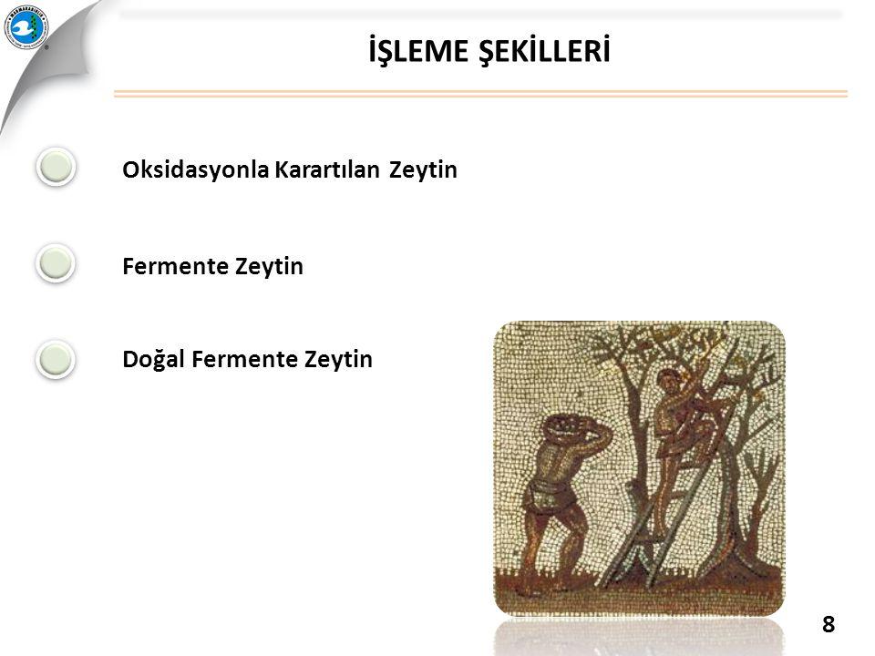 İŞLEME ŞEKİLLERİ Oksidasyonla Karartılan Zeytin Fermente Zeytin Doğal Fermente Zeytin 8