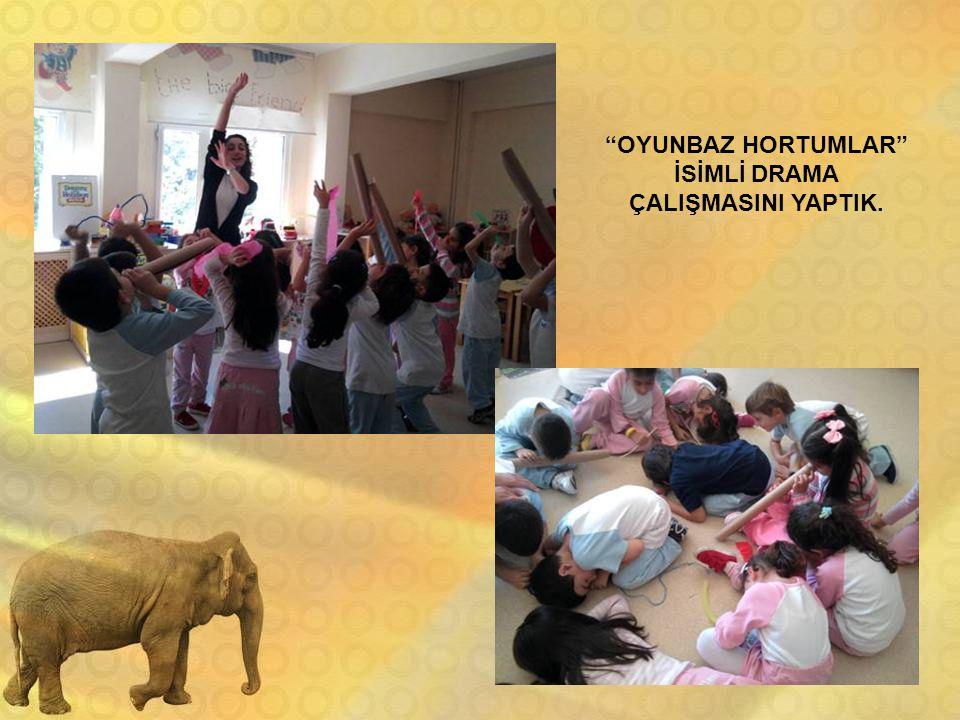 """""""OYUNBAZ HORTUMLAR"""" İSİMLİ DRAMA ÇALIŞMASINI YAPTIK."""