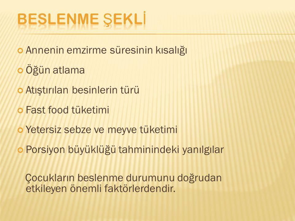 Annenin emzirme süresinin kısalığı Öğün atlama Atıştırılan besinlerin türü Fast food tüketimi Yetersiz sebze ve meyve tüketimi Porsiyon büyüklüğü tahm