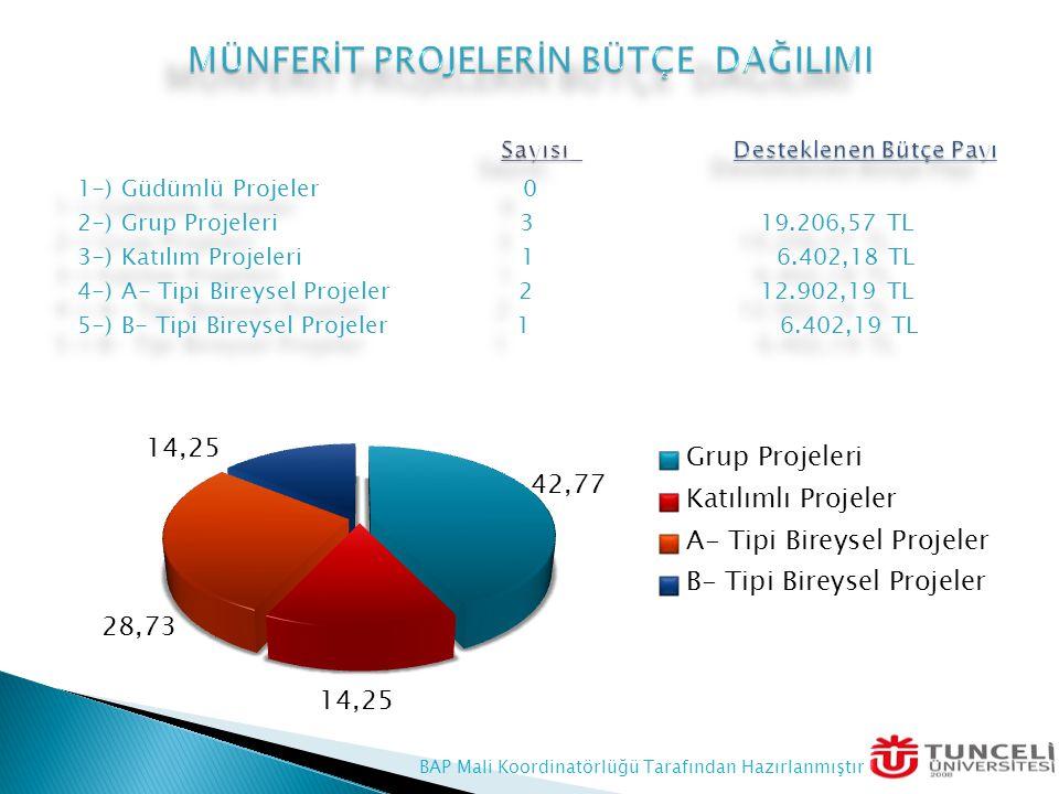 1-) Güdümlü Projeler 0 2-) Grup Projeleri 3 19.206,57 TL 3-) Katılım Projeleri 1 6.402,18 TL 4-) A- Tipi Bireysel Projeler 2 12.902,19 TL 5-) B- Tipi