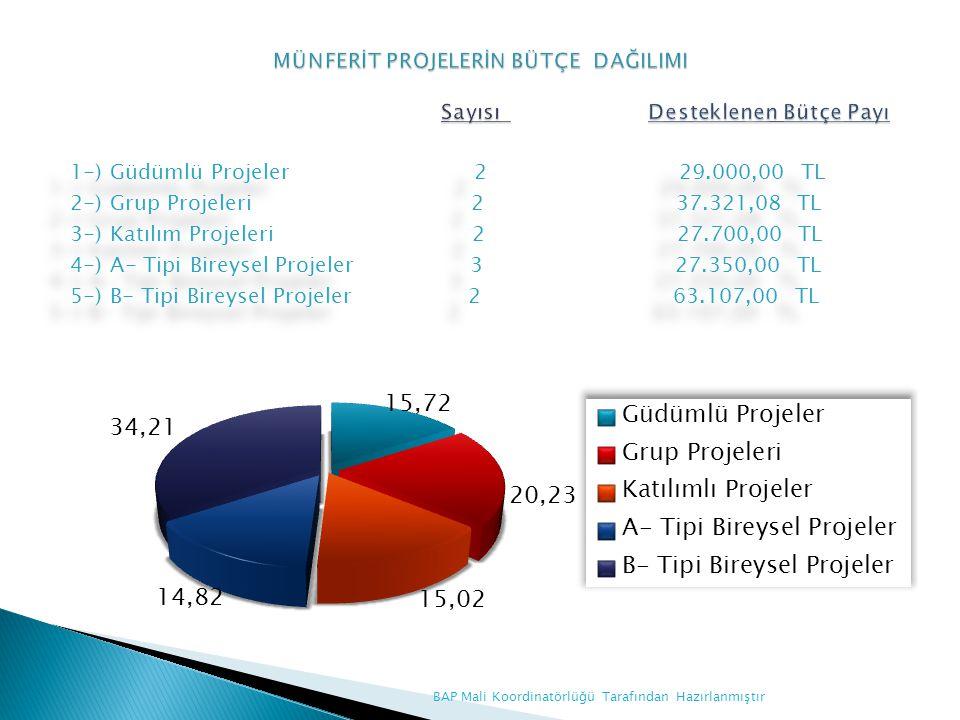 1-) Güdümlü Projeler 2 29.000,00 TL 2-) Grup Projeleri 2 37.321,08 TL 3-) Katılım Projeleri 2 27.700,00 TL 4-) A- Tipi Bireysel Projeler 3 27.350,00 T