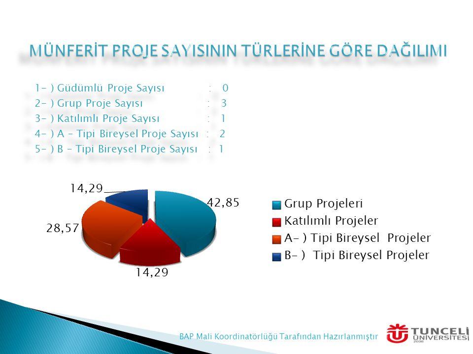 1- ) Güdümlü Proje Sayısı : 0 2- ) Grup Proje Sayısı : 3 3- ) Katılımlı Proje Sayısı : 1 4- ) A – Tipi Bireysel Proje Sayısı : 2 5- ) B – Tipi Bireyse