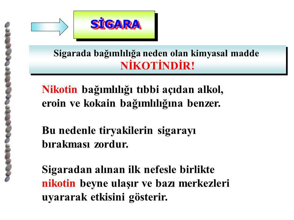 SİGARASİGARA Sigarada bağımlılığa neden olan kimyasal madde NİKOTİNDİR! Sigarada bağımlılığa neden olan kimyasal madde NİKOTİNDİR! Nikotin bağımlılığı