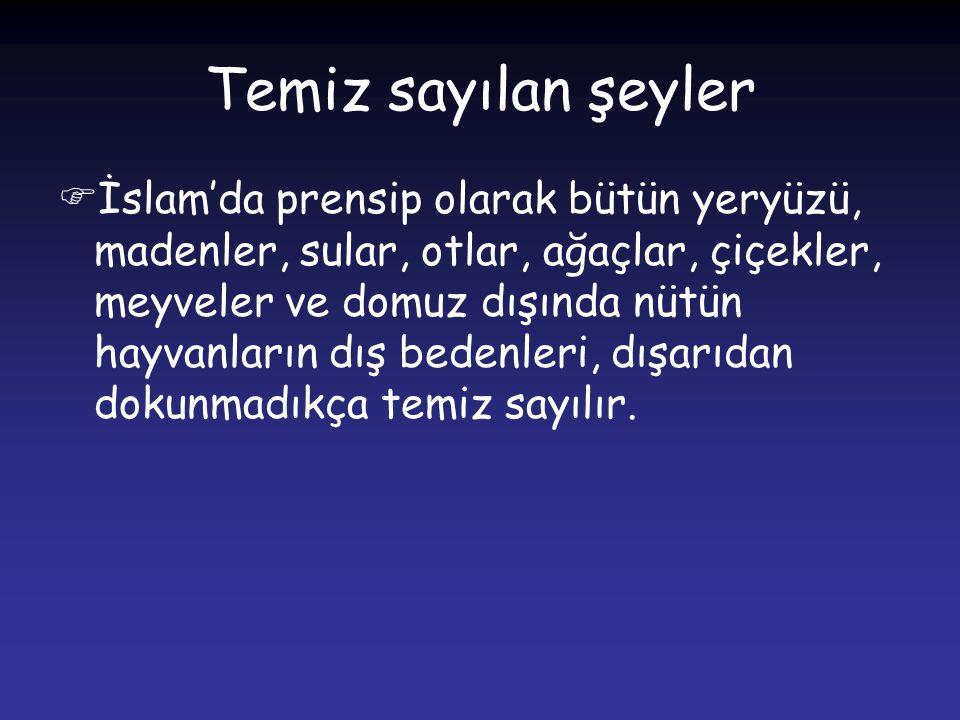 Temiz sayılan şeyler İİslam'da prensip olarak bütün yeryüzü, madenler, sular, otlar, ağaçlar, çiçekler, meyveler ve domuz dışında nütün hayvanların