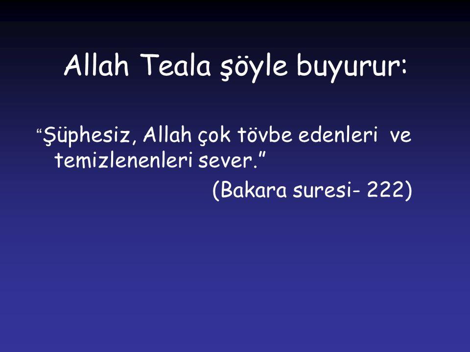 """Allah Teala şöyle buyurur: """" Şüphesiz, Allah çok tövbe edenleri ve temizlenenleri sever."""" (Bakara suresi- 222)"""