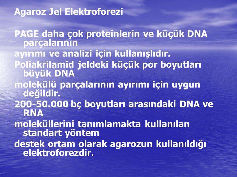 Agaroz Jel Elektroforezi PAGE daha çok proteinlerin ve küçük DNA parçalarının ayırımı ve analizi için kullanışlıdır. Poliakrilamid jeldeki küçük por b