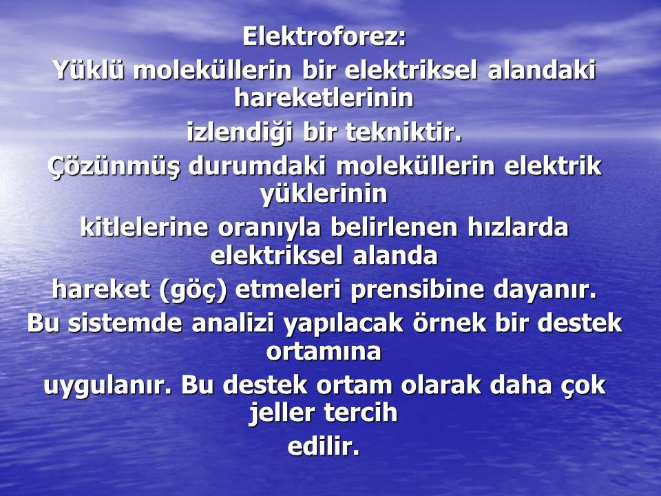 Elektroforez: Yüklü moleküllerin bir elektriksel alandaki hareketlerinin izlendiği bir tekniktir. Çözünmüş durumdaki moleküllerin elektrik yüklerinin