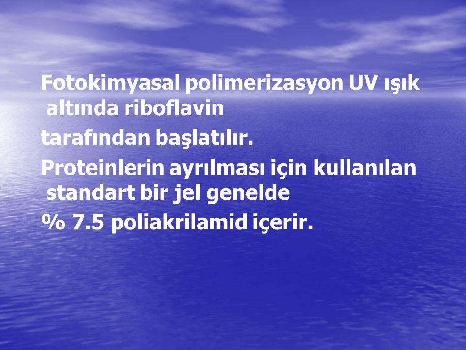 Fotokimyasal polimerizasyon UV ışık altında riboflavin tarafından başlatılır. Proteinlerin ayrılması için kullanılan standart bir jel genelde % 7.5 po