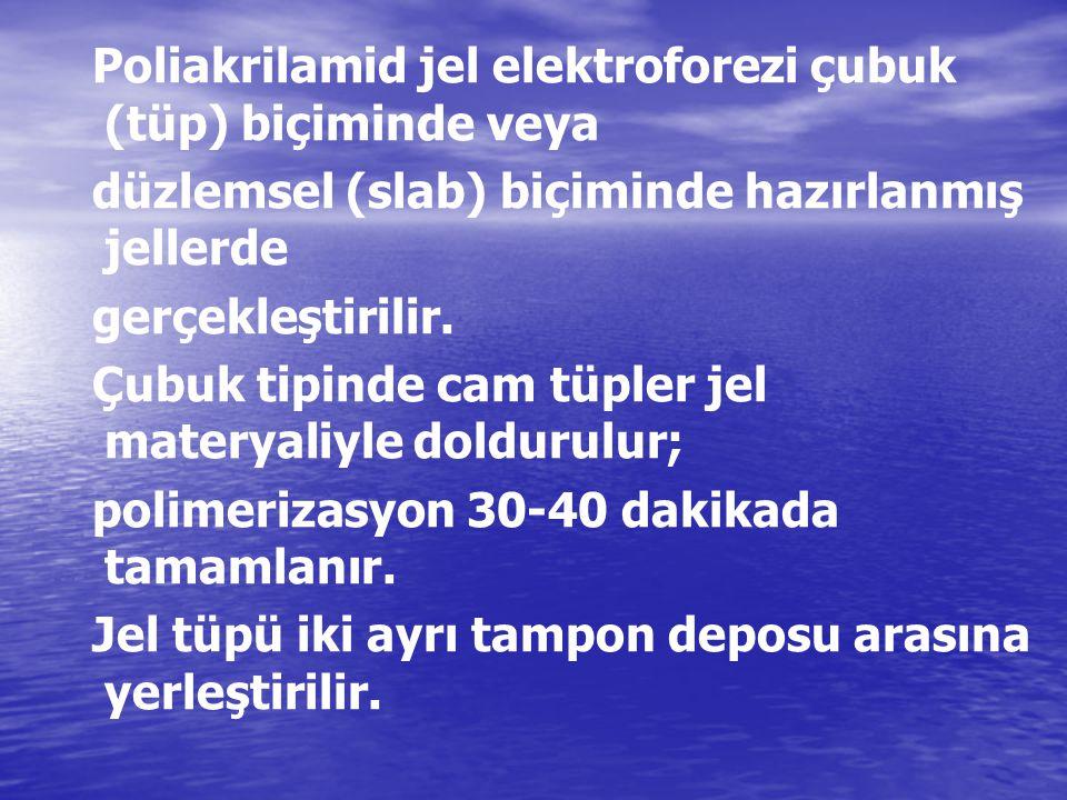 Poliakrilamid jel elektroforezi çubuk (tüp) biçiminde veya düzlemsel (slab) biçiminde hazırlanmış jellerde gerçekleştirilir. Çubuk tipinde cam tüpler