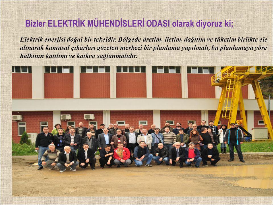 Elektrik enerjisi doğal bir tekeldir. Bölgede üretim, iletim, dağıtım ve tüketim birlikte ele alınarak kamusal çıkarları gözeten merkezi bir planlama