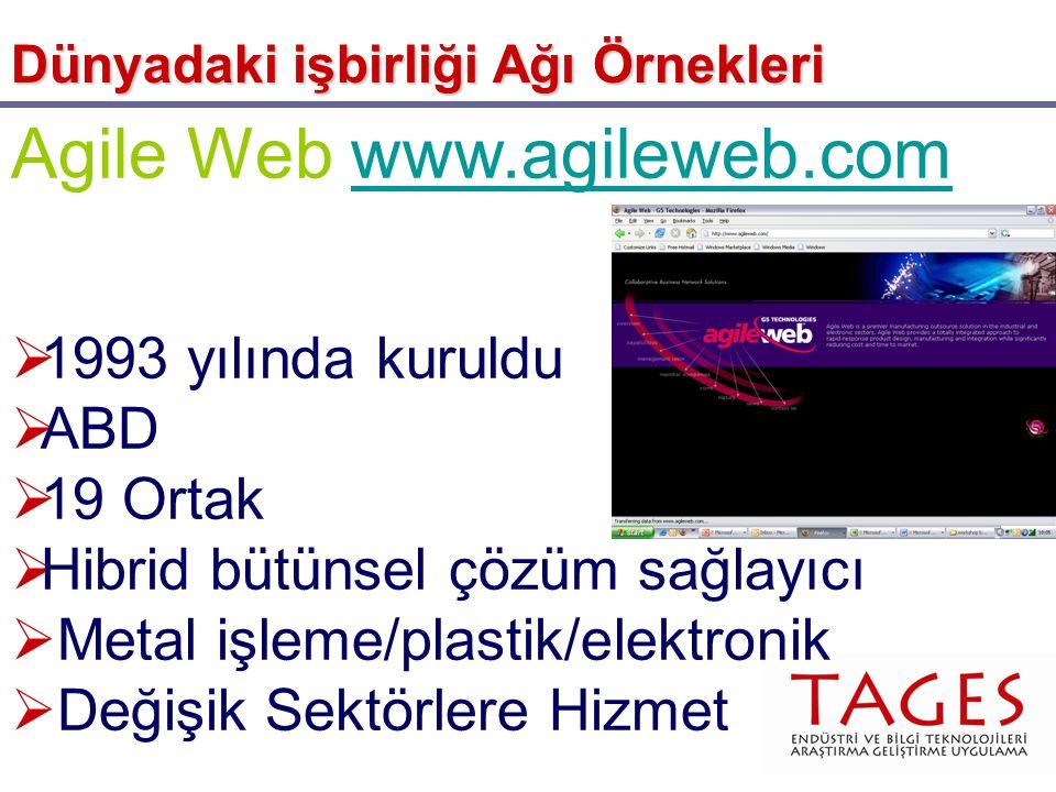 Agile Web www.agileweb.comwww.agileweb.com  1993 yılında kuruldu  ABD  19 Ortak  Hibrid bütünsel çözüm sağlayıcı  Metal işleme/plastik/elektronik  Değişik Sektörlere Hizmet Dünyadaki işbirliği Ağı Örnekleri