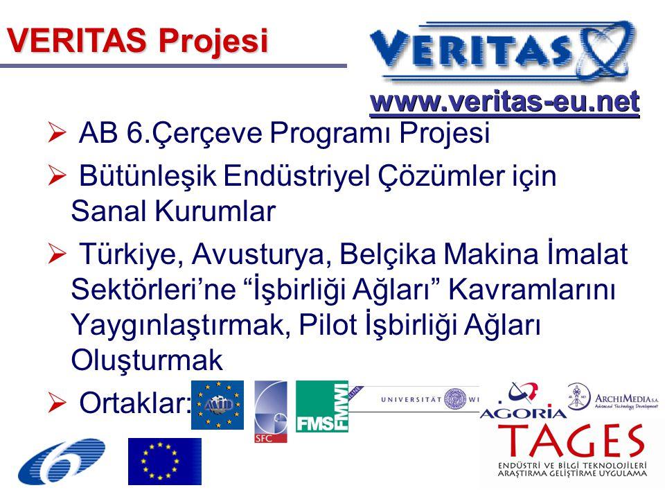 VERITAS Projesi  AB 6.Çerçeve Programı Projesi  Bütünleşik Endüstriyel Çözümler için Sanal Kurumlar  Türkiye, Avusturya, Belçika Makina İmalat Sektörleri'ne İşbirliği Ağları Kavramlarını Yaygınlaştırmak, Pilot İşbirliği Ağları Oluşturmak  Ortaklar: www.veritas-eu.net