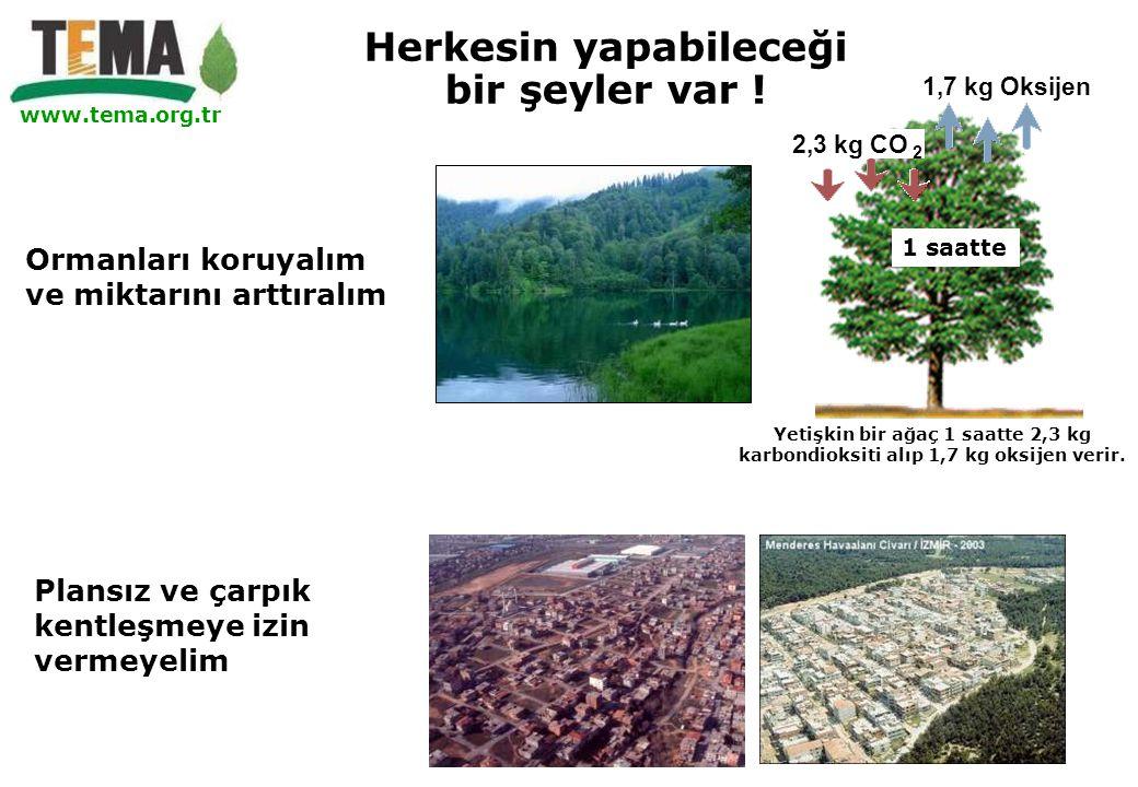 www.tema.org.tr Ormanları koruyalım ve miktarını arttıralım Plansız ve çarpık kentleşmeye izin vermeyelim 1,7 kg Oksijen 2,3 kg CO 2 1 saatte Yetişkin