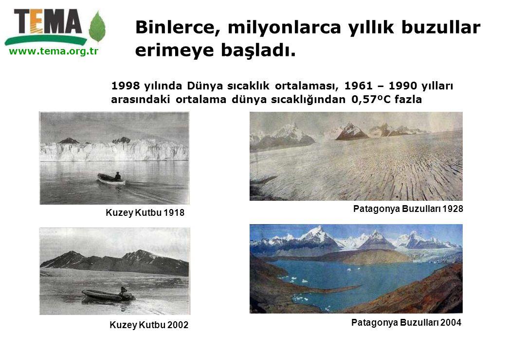 www.tema.org.tr Patagonya Buzulları 1928 Patagonya Buzulları 2004 Kuzey Kutbu 2002 1998 yılında Dünya sıcaklık ortalaması, 1961 – 1990 yılları arasınd