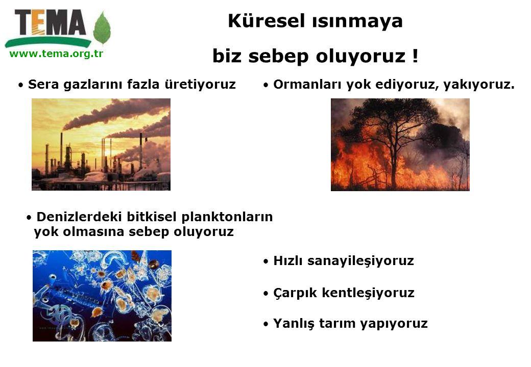 www.tema.org.tr • Sera gazlarını fazla üretiyoruz• Ormanları yok ediyoruz, yakıyoruz. • Çarpık kentleşiyoruz • Hızlı sanayileşiyoruz • Denizlerdeki bi