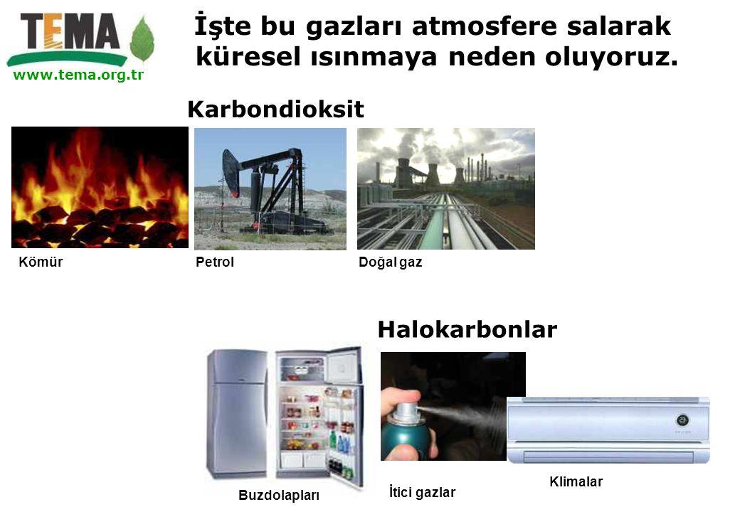 www.tema.org.tr Kömür PetrolDoğal gaz Karbondioksit Halokarbonlar Buzdolapları İtici gazlar Klimalar İşte bu gazları atmosfere salarak küresel ısınmay