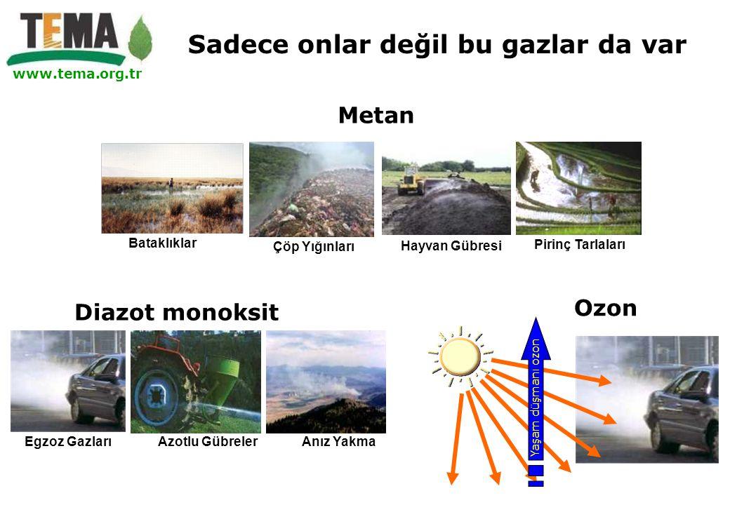 www.tema.org.tr Yaşam düşmanı ozon Ozon Diazot monoksit Egzoz Gazları Azotlu Gübreler Anız Yakma Metan Çöp Yığınları Hayvan Gübresi Pirinç Tarlaları B