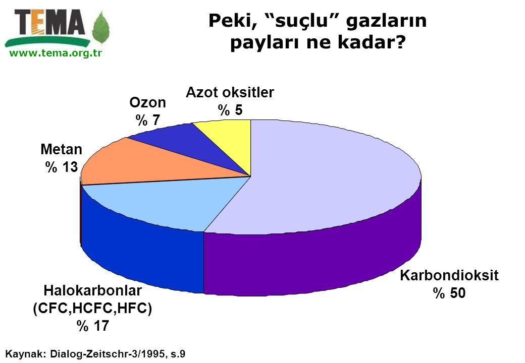 "www.tema.org.tr Karbondioksit % 50 Azot oksitler % 5 Ozon % 7 Metan % 13 Halokarbonlar (CFC,HCFC,HFC) % 17 Kaynak: Dialog-Zeitschr-3/1995, s.9 Peki, """