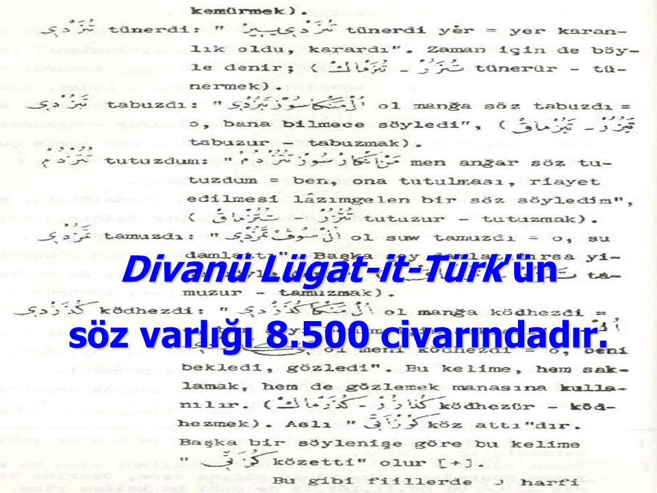Divanü Lügat-it-Türk'ün söz varlığı 8.500 civarındadır.