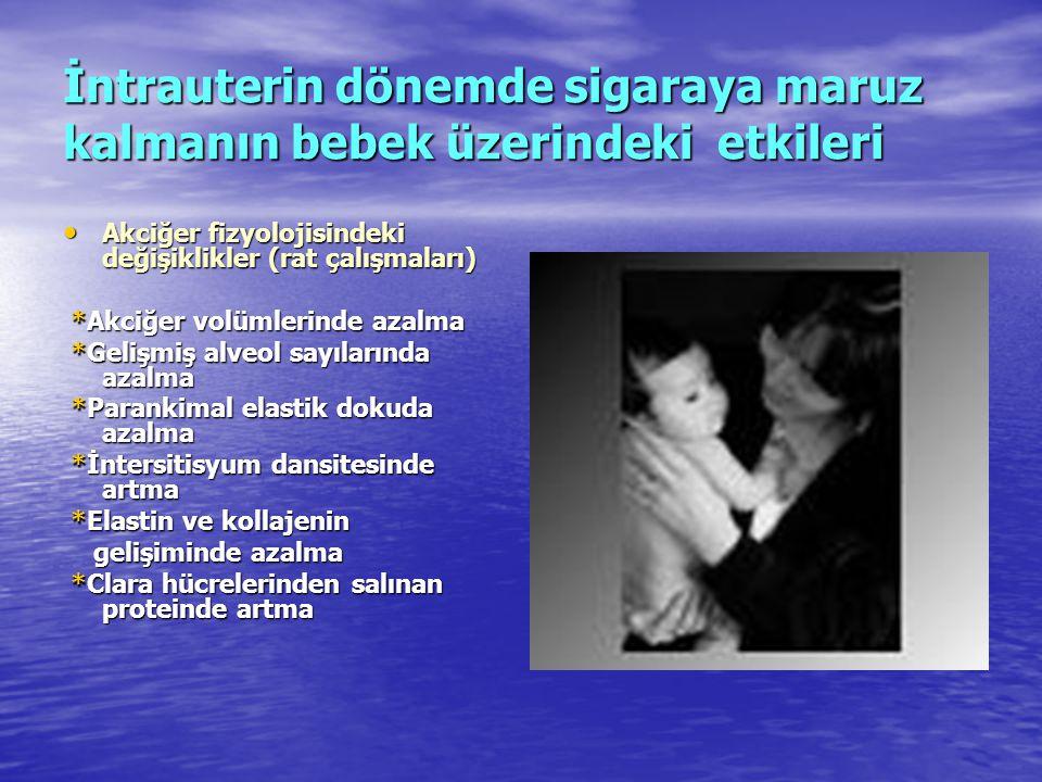 İntrauterin dönemde sigaraya maruz kalmanın bebek üzerindeki etkileri • Akciğer fizyolojisindeki değişiklikler (rat çalışmaları) *Akciğer volümlerinde
