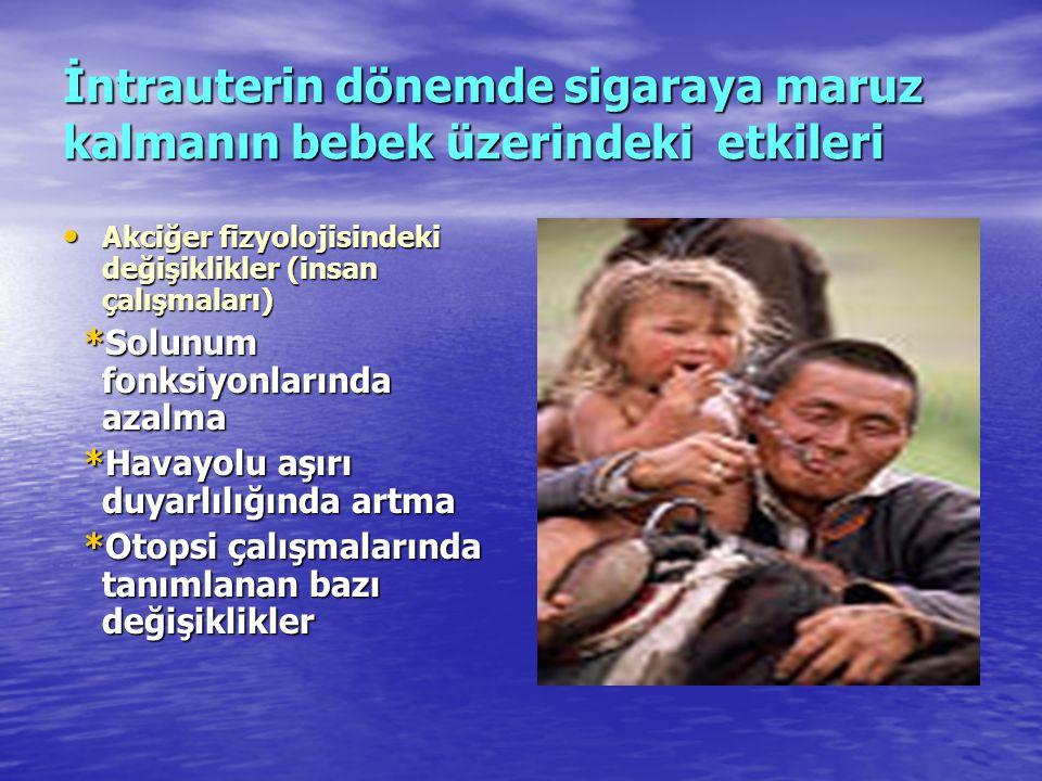 İntrauterin dönemde sigaraya maruz kalmanın bebek üzerindeki etkileri • Akciğer fizyolojisindeki değişiklikler (insan çalışmaları) *Solunum fonksiyonl