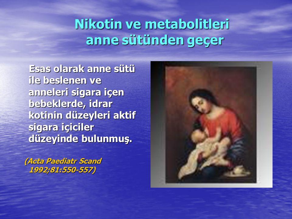 Nikotin ve metabolitleri anne sütünden geçer Nikotin ve metabolitleri anne sütünden geçer Esas olarak anne sütü ile beslenen ve anneleri sigara içen b
