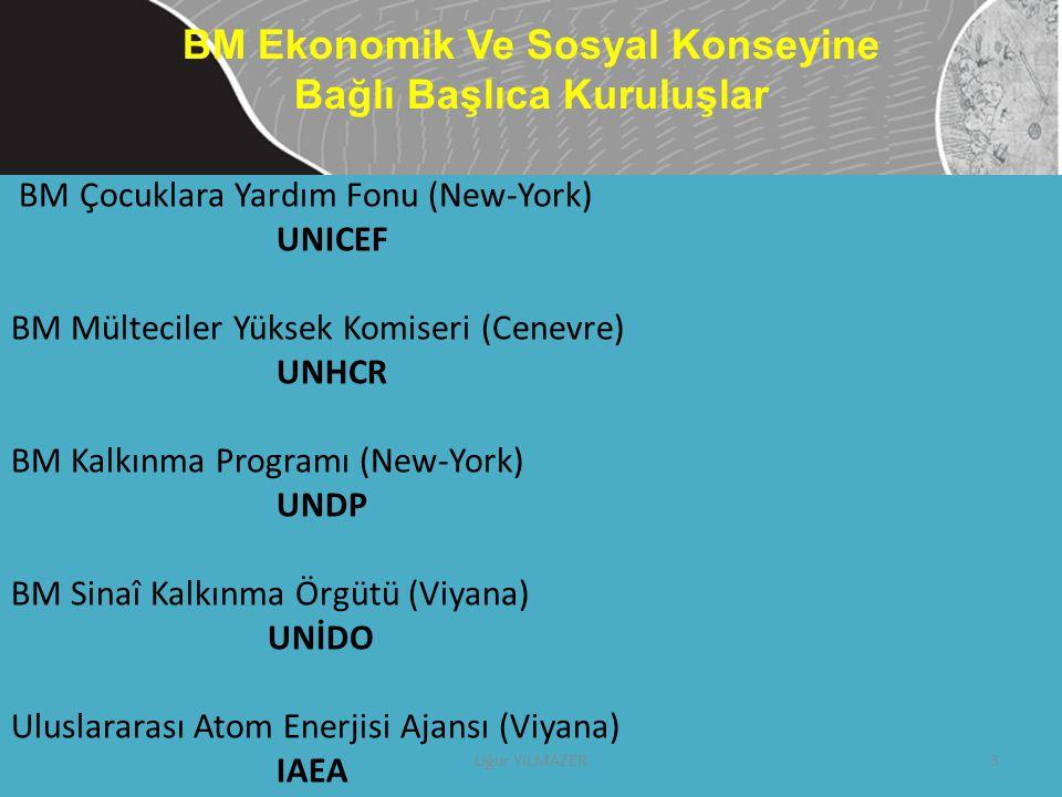 BM Çocuklara Yardım Fonu (New-York) UNICEF BM Mülteciler Yüksek Komiseri (Cenevre) UNHCR BM Kalkınma Programı (New-York) UNDP BM Sinaî Kalkınma Örgütü