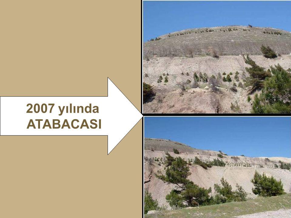 2007 yılında ATABACASI