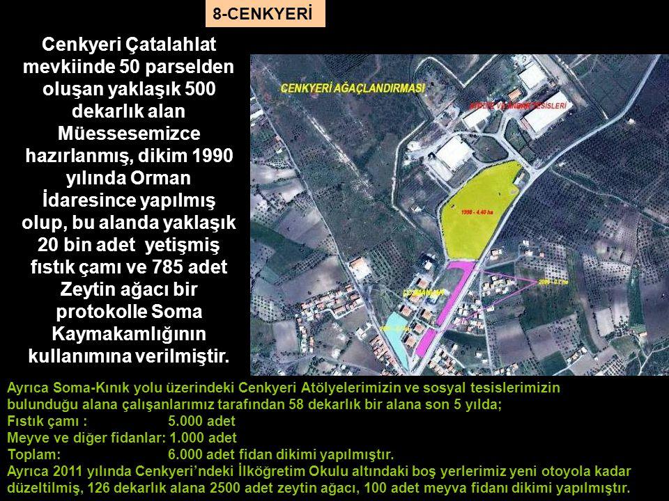 Ayrıca Soma-Kınık yolu üzerindeki Cenkyeri Atölyelerimizin ve sosyal tesislerimizin bulunduğu alana çalışanlarımız tarafından 58 dekarlık bir alana so