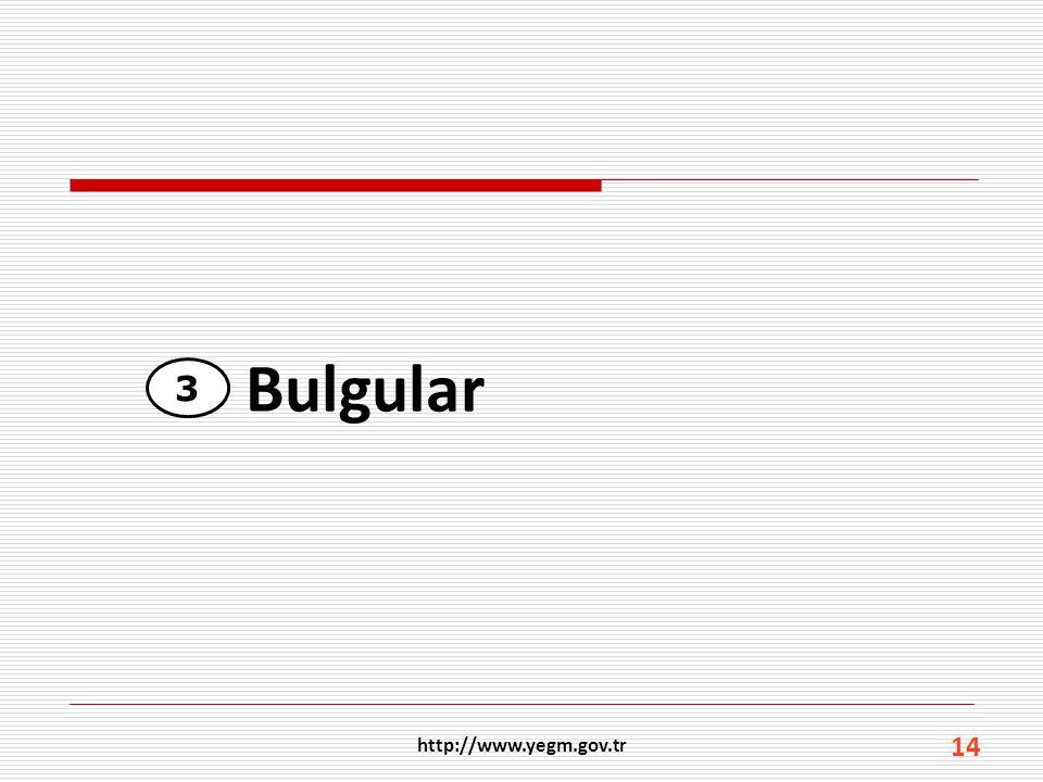 3 14 Bulgular