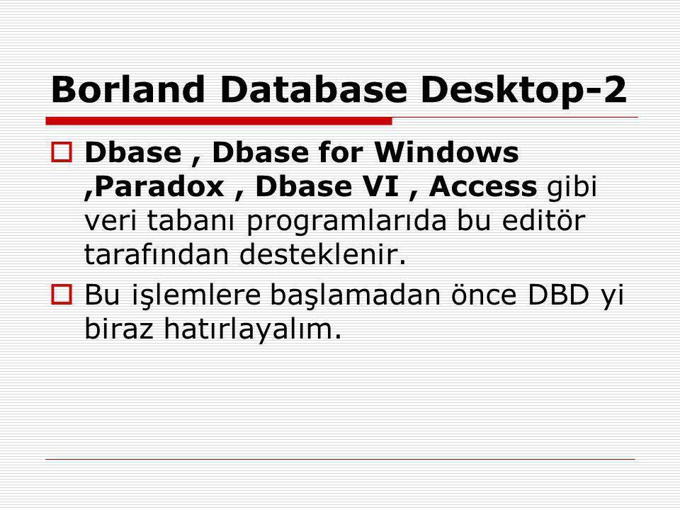 Borland Database Desktop-3  Yanda görülen ekran DBD ın ilk ekranıdır.
