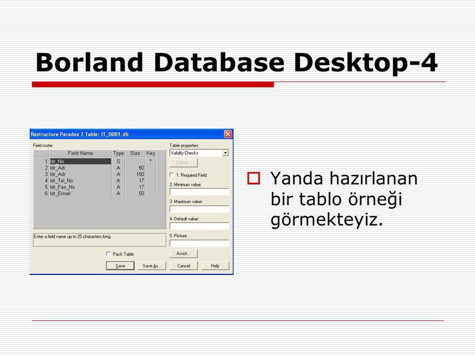 Borland Database Desktop-4  Yanda hazırlanan bir tablo örneği görmekteyiz.