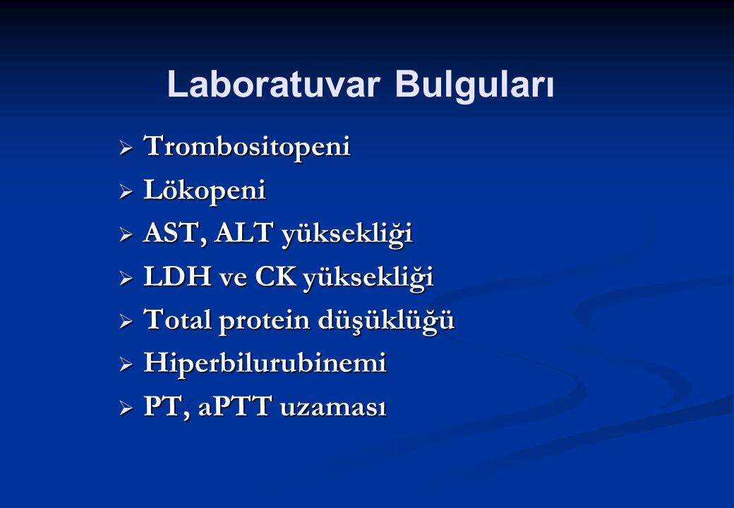  Trombositopeni  Lökopeni  AST, ALT yüksekliği  LDH ve CK yüksekliği  Total protein düşüklüğü  Hiperbilurubinemi  PT, aPTT uzaması Laboratuvar