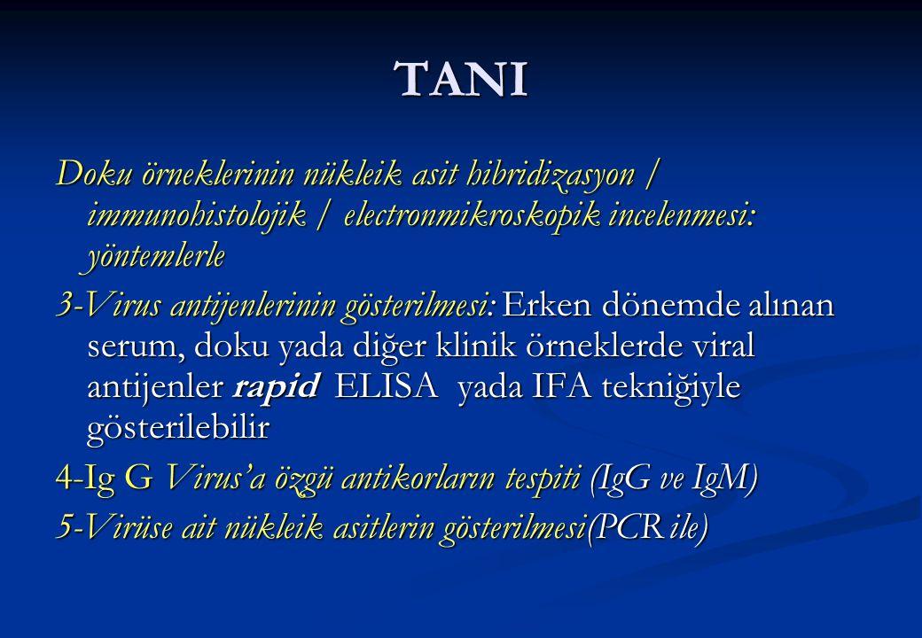 TANI Doku örneklerinin nükleik asit hibridizasyon / immunohistolojik / electronmikroskopik incelenmesi: yöntemlerle 3-Virus antijenlerinin gösterilmes